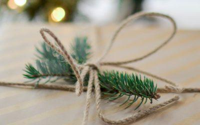 Kerst in huis? Adopteer een boom!